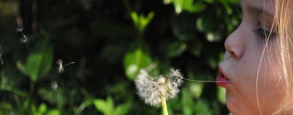 Asthma deaths - an avoidable tragedy?