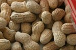 Could peanuts be the cure to peanut allergies?